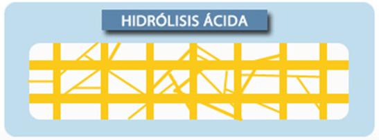 Idrolisi acida