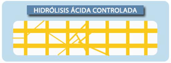 Idrolisi acida controllata
