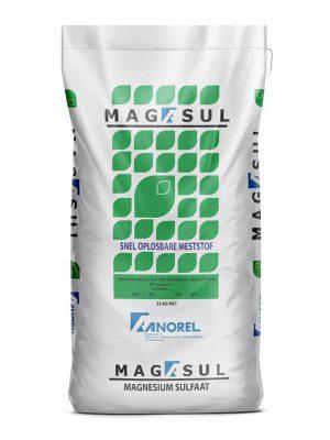 Magasul