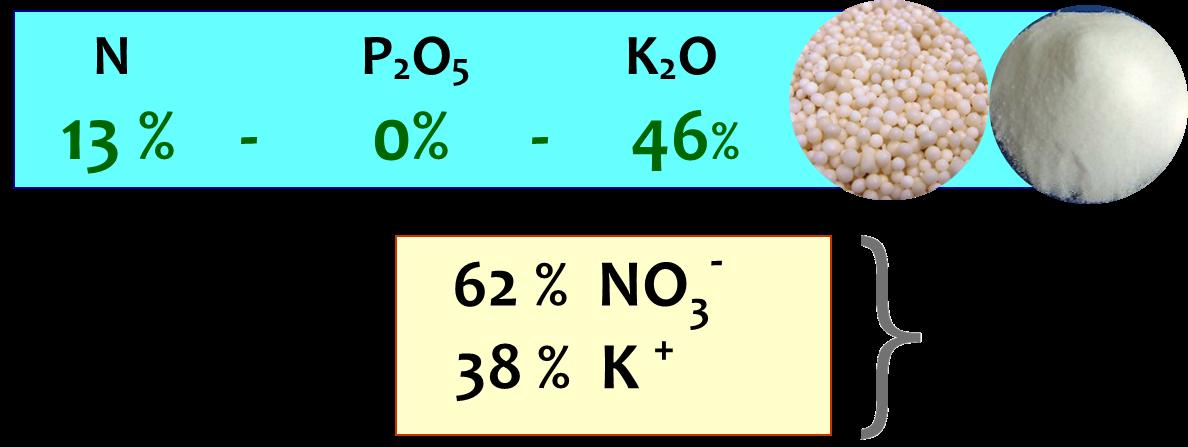 Nitrato di potassio